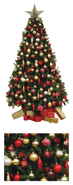 Valley Provincial, London Christmas Tree hire, Christmas tree hire, office Christmas tree, corporate Christmas tree, corporate planting, office landscaping
