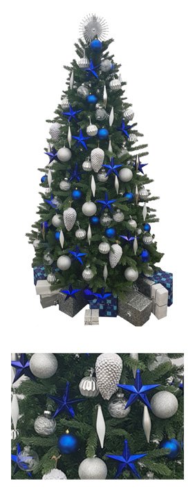 Valley Provincial, London Christmas Tree hire, Christmas tree hire, office Christmas tree, corporate Christmas tree, corporate planting