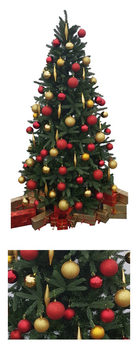 Valley Provincial, London Christmas Tree hire, Christmas tree hire, office Christmas tree, corporate Christmas tree, commercial planting, South East Christmas tree hire