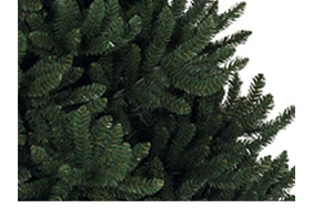 Valley Provincial, London office landscaping, Christmas tree hire, office Christmas tree, South East office landscaping, corporate Christmas tree, office grounds management, corporate planting